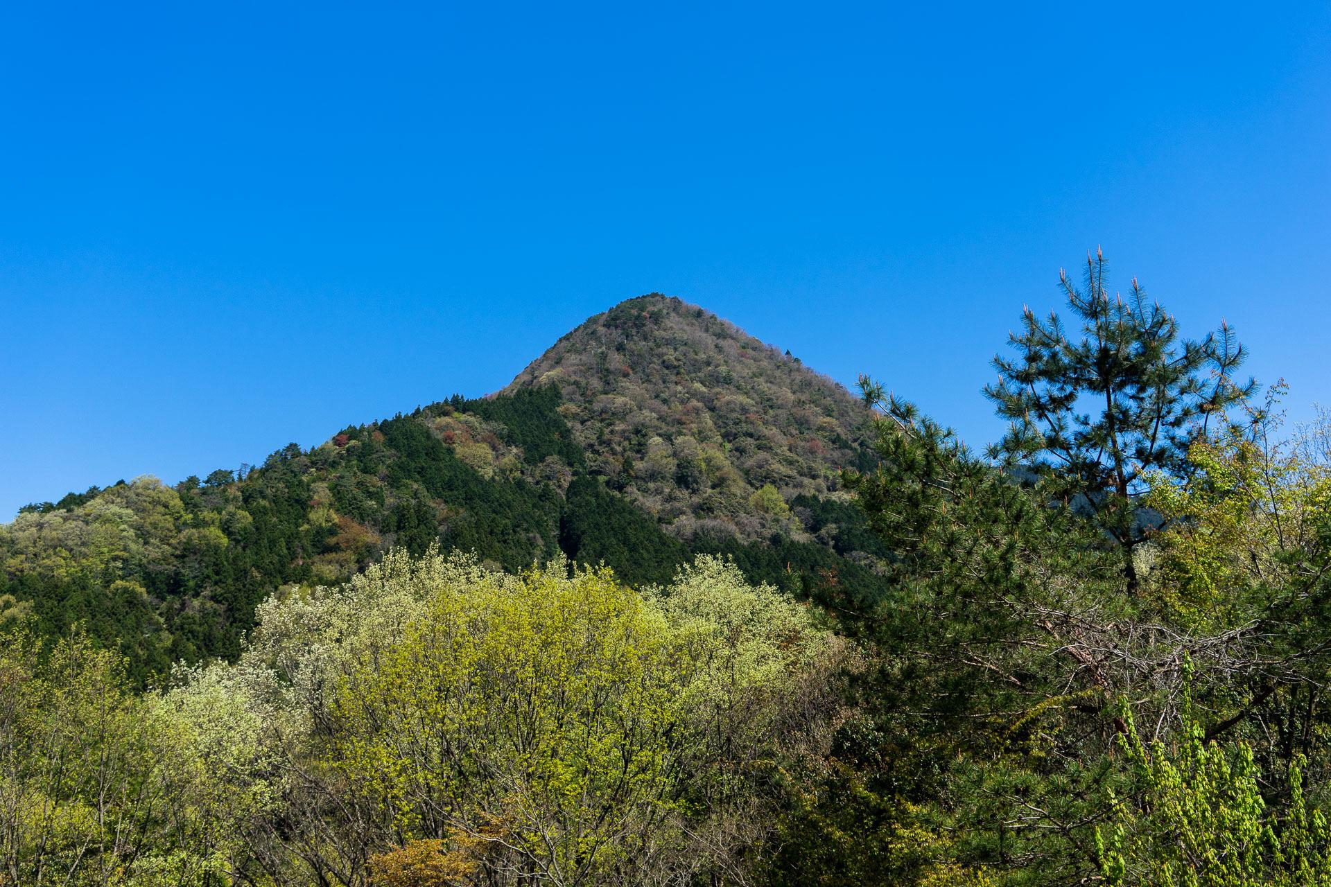 2017新緑の山