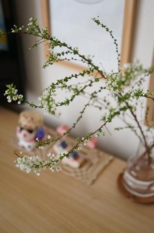 sk-00199071.jpg