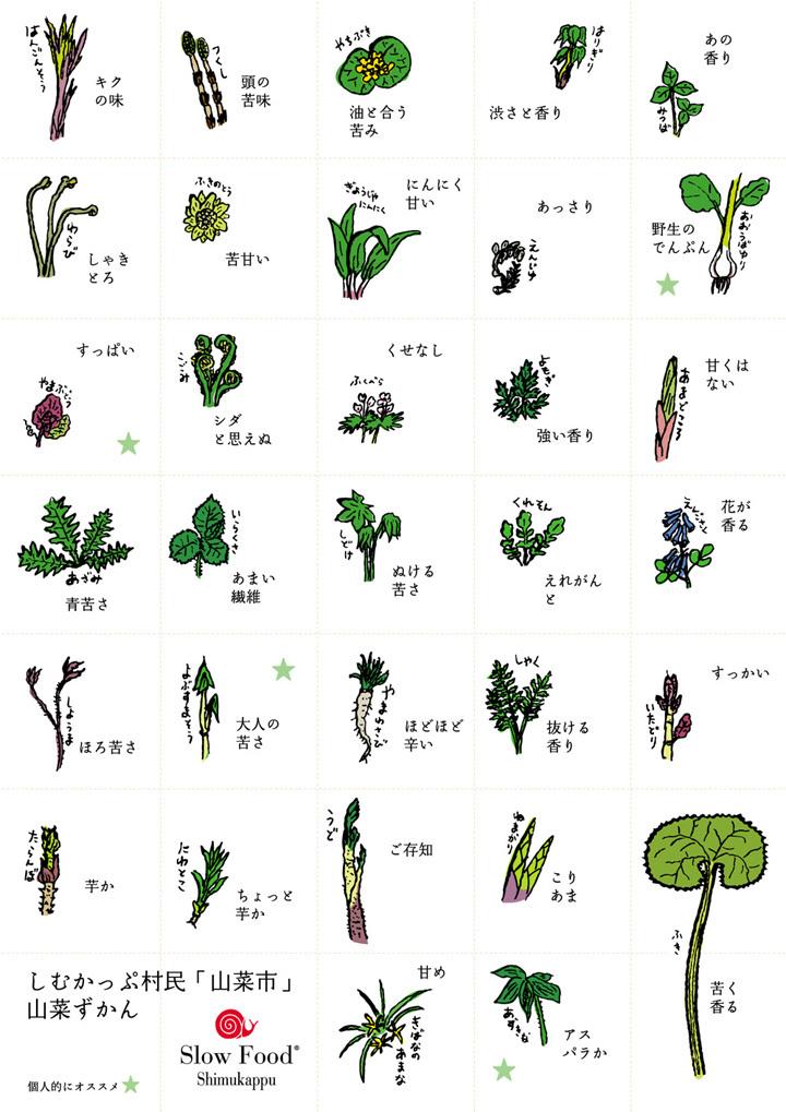 山菜ずかん2