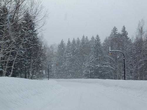 s-雪が降りまくり~