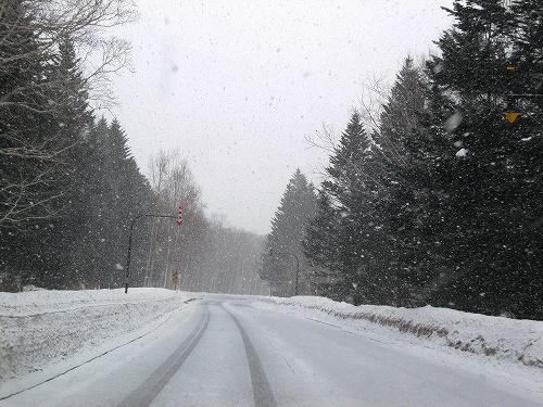 s-雪の日。。。