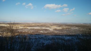サテライト展望台からの眺望