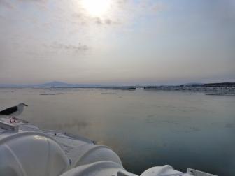 船から見た景色