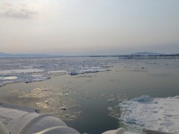 網走流氷 (1)