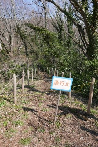 170322SARUYAMA_13.jpg