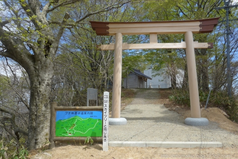 170423HOUDATSU_05.jpg