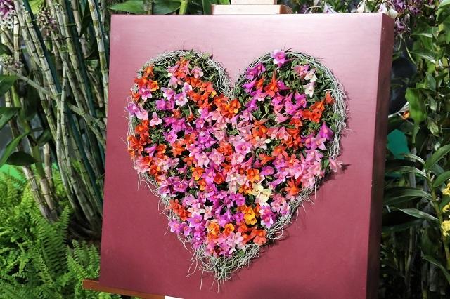 特別展示「光を愛する蘭と地中に息づく蘭(カスパードソニー)