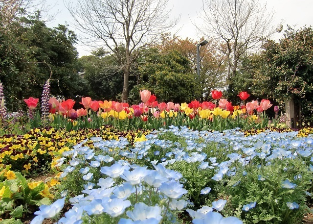 満開の春景色