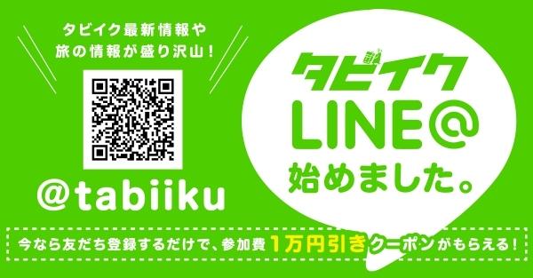 lineat1.jpg