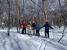 緩やかな林の中のお散歩コース。