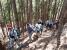 植林の中の登山道を登っていく