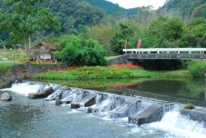 馬洗川に咲くヒガンバナ