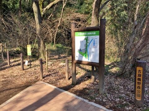 307古淵鵜野森公園