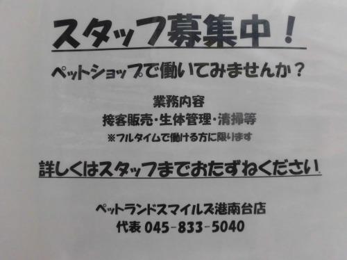 s-17-3-14-8.jpg