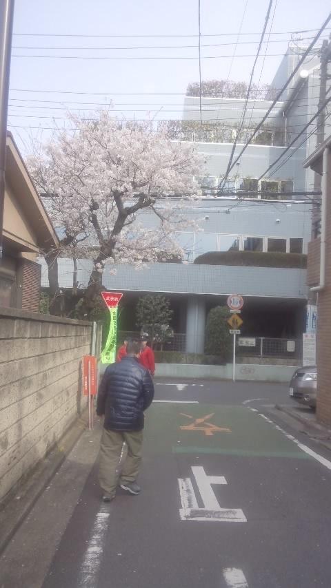 大島さんブログ用写真