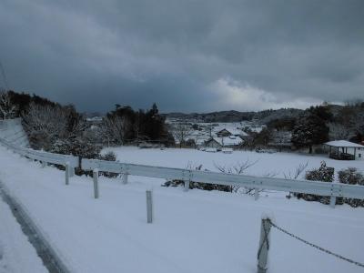 2.11雪の様子