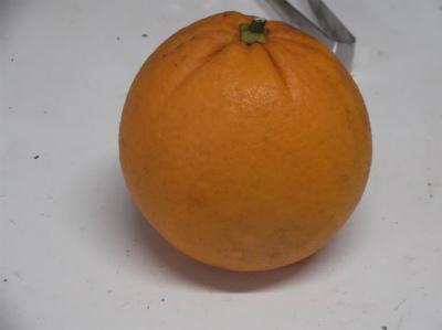 2.12ネーブルオレンジ