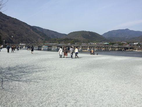 嵐山公園_H29.03.05撮影