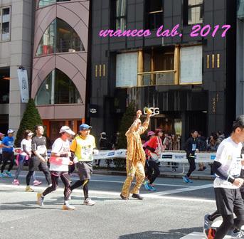 2月27日東京マラソン2