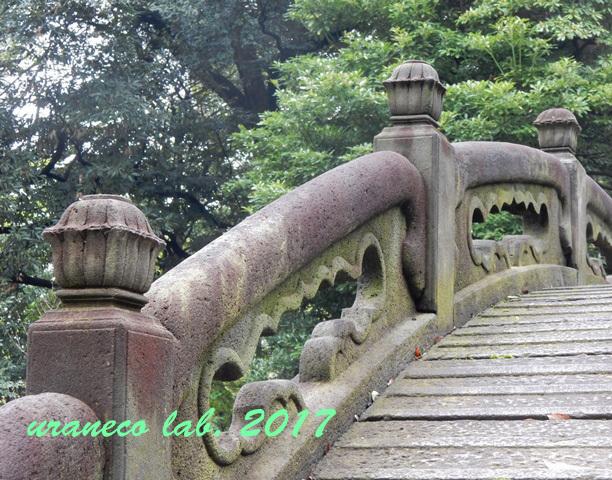 4月20日小石川後楽園5
