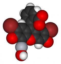 ヒプノセラピー スピリチュアルライフ マーキュロクロム液 赤チン