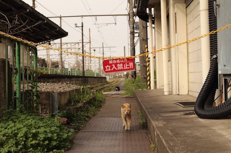 20170318扇町駅10-1a