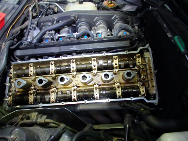 P2120039.jpg