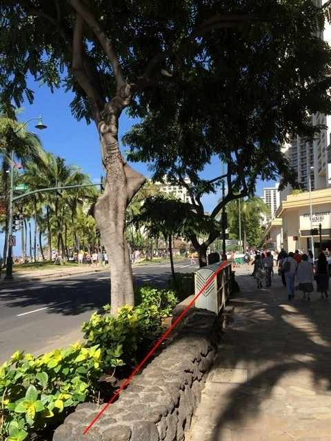 ハワイ(喫煙場所)