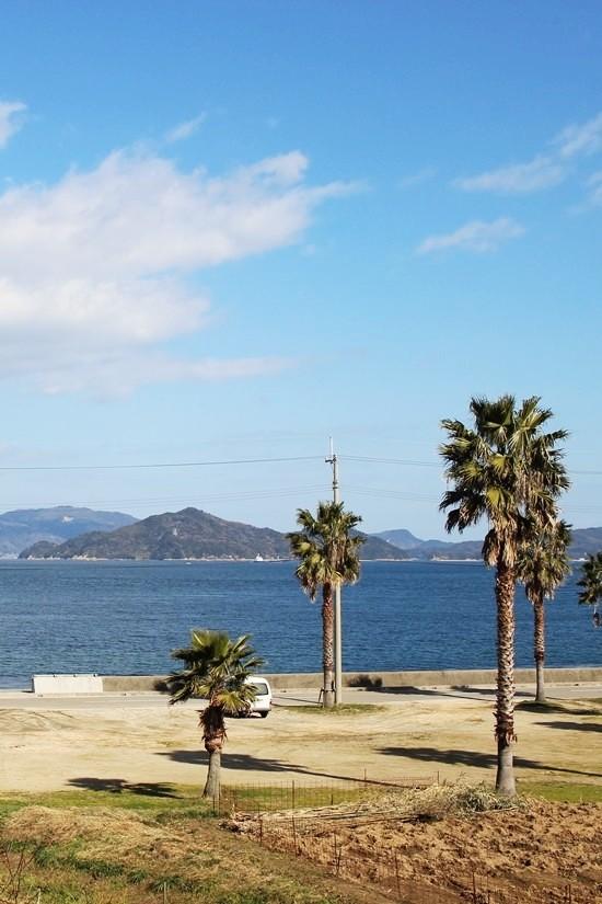 大角海浜公園