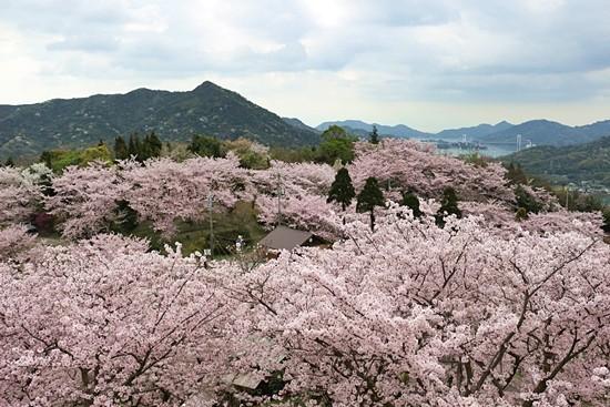 開山(伯方島)