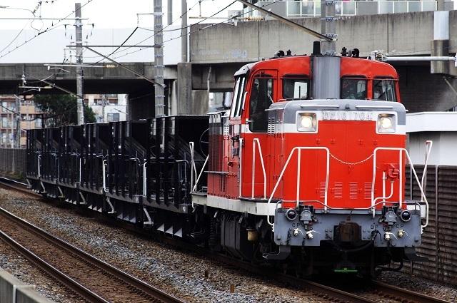 IMGP2894.jpg