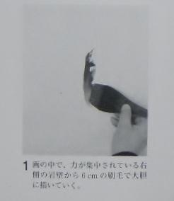 DSCN1104 (1280x960) - コピー