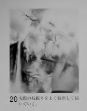 DSCN1114 (1280x960) - コピー (4)