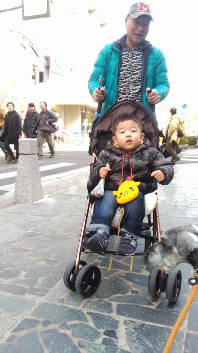 2017-2-26 奈良公園  2