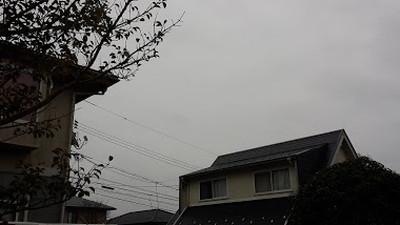 170321_Sora.jpg