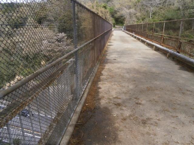 小田原厚木道路高架
