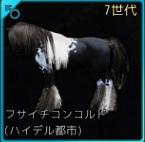 6Gch011_仔馬
