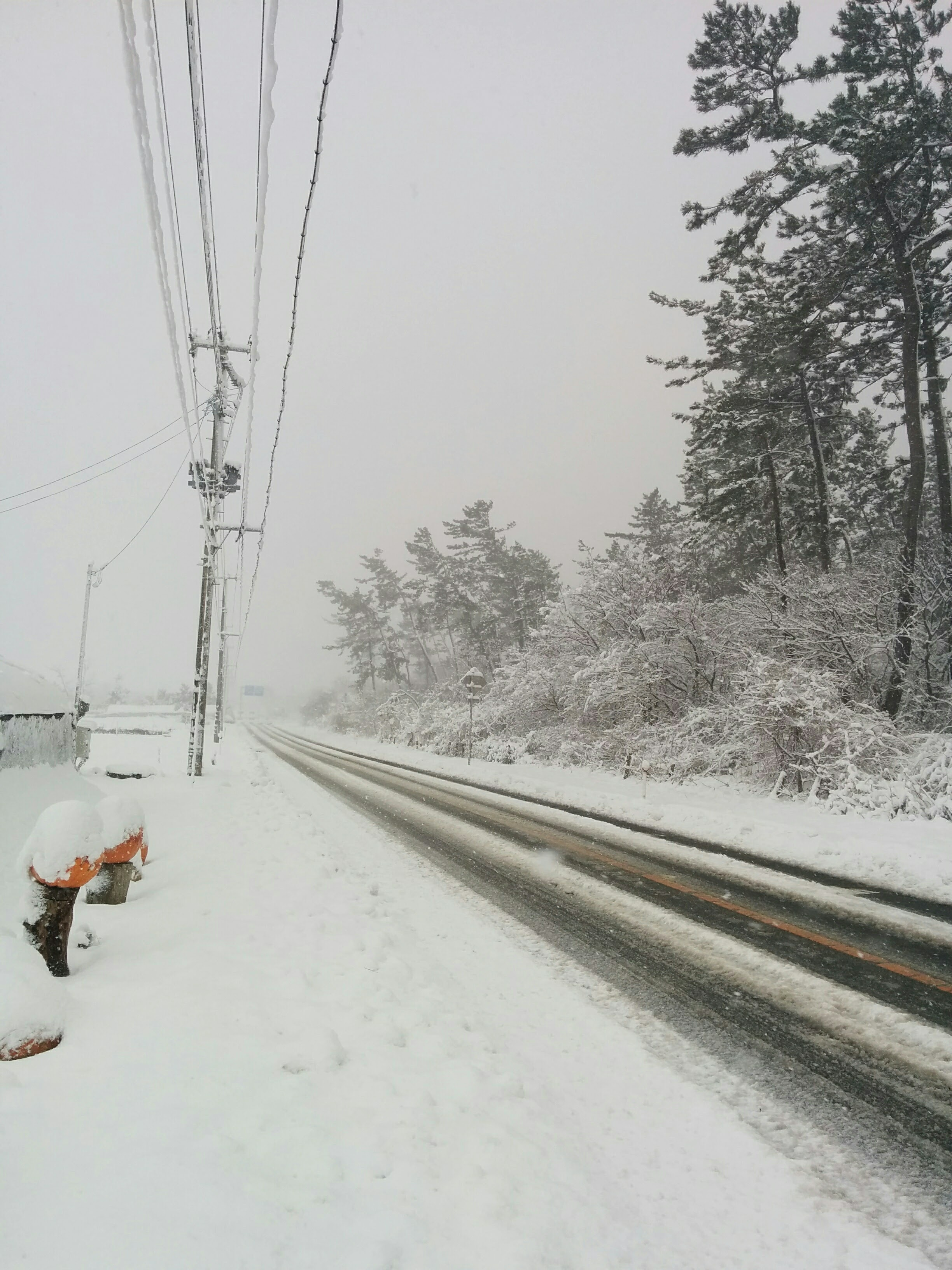 2017年雪の様子2