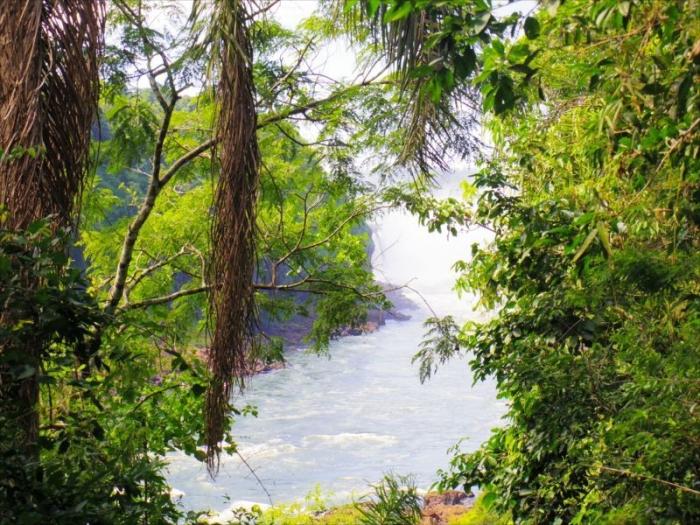 イグアスの滝 (24)