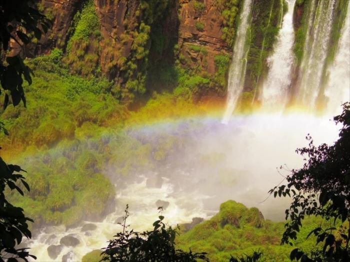 イグアスの滝 (50)
