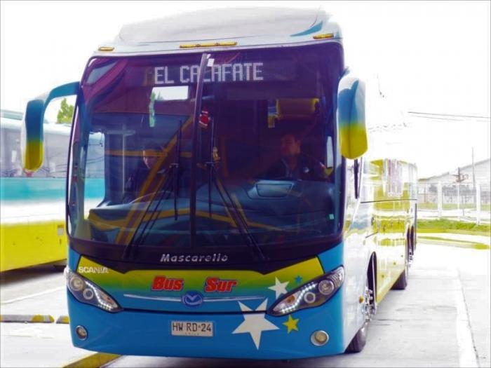 プエルトナタレスからエルカラファテs (6)