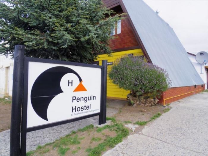 ペンギンホステル (4)