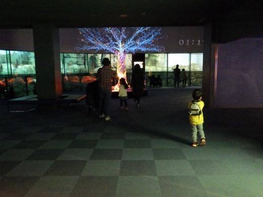 八景島シーパラダイス (5)