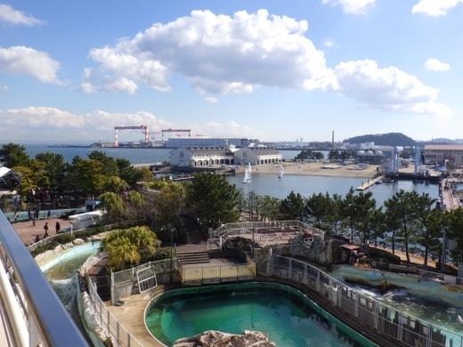 八景島シーパラダイス (53)