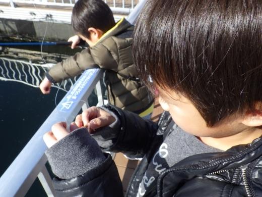 シーパラ釣り堀 (12)