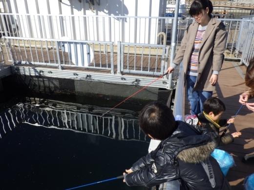 シーパラ釣り堀 (13)