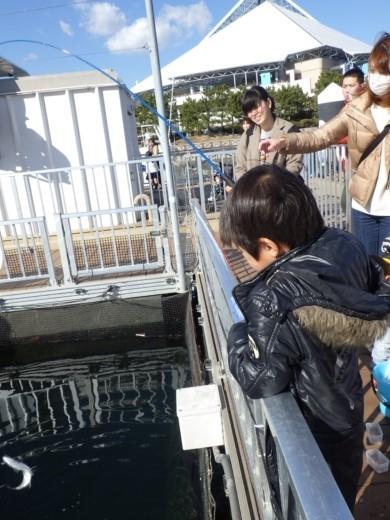 シーパラ釣り堀 (31)