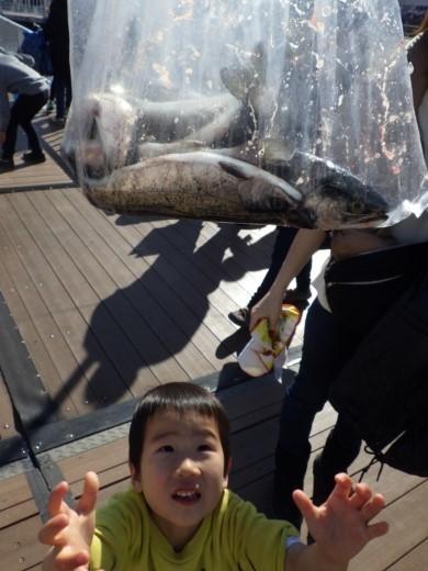 シーパラ釣り堀 (35)