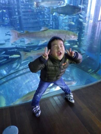 森の中の水族館 (35)