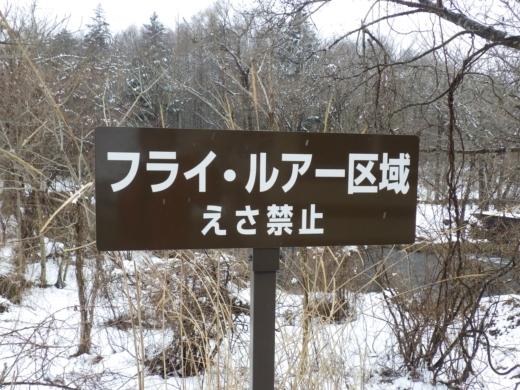 山梨県忍野 掛川 (1)